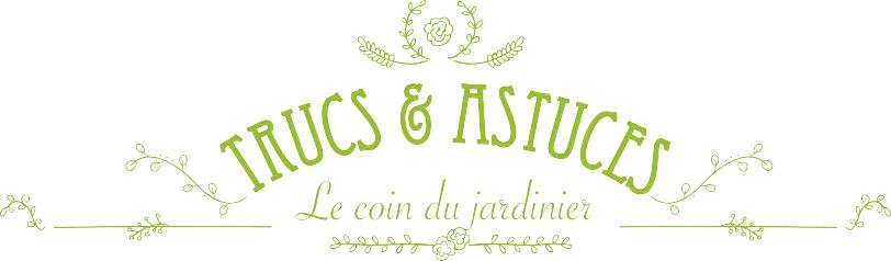 t&a_logo